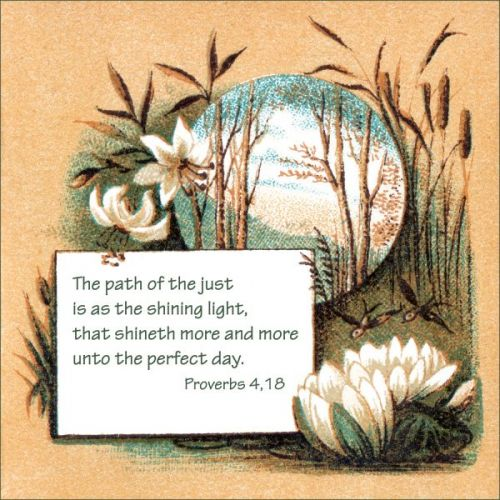Bible Proverbs - Image 6