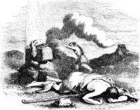 Cain and Abel - Image 6