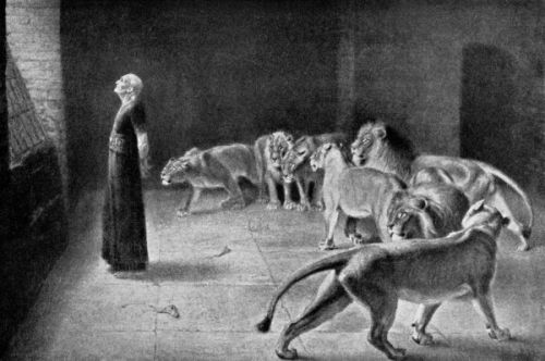 Daniel and the Lions - Image 12