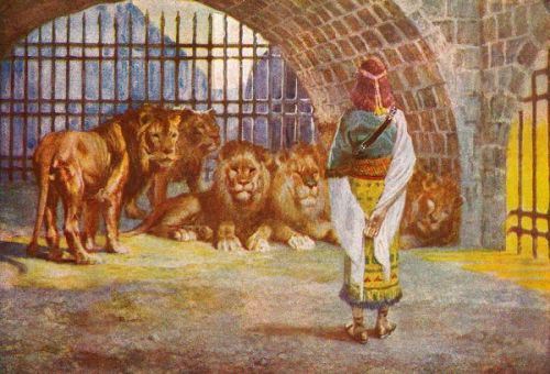 Daniel and the Lions - Image 3