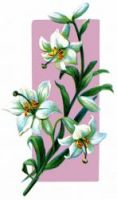Easter Flowers - Image 5