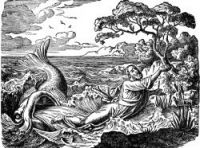 Jonah and the Whale - Image 10