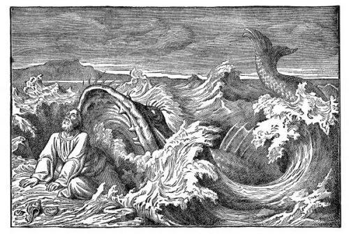 Jonah and the Whale - Image 9