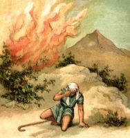 Moses Burning Bush - Image 6