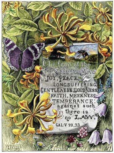 Popular Bible Verses - Image 1