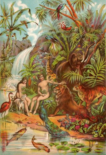 The Garden of Eden - Image 1