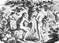 The Garden of Eden - Image 7